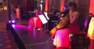 Hire String Quartet For Events